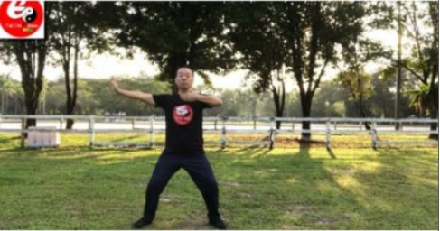 Tai Chi Qi Gong Fitness For Office